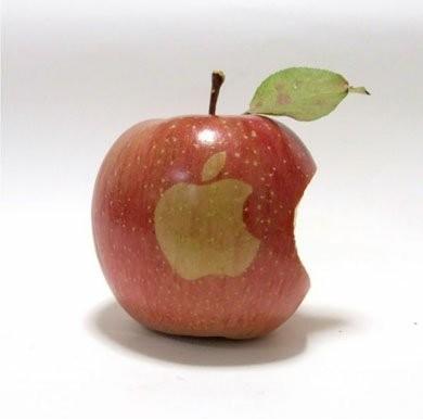 ВЯпонии вырастили яблоки Apple. Изображение № 5.