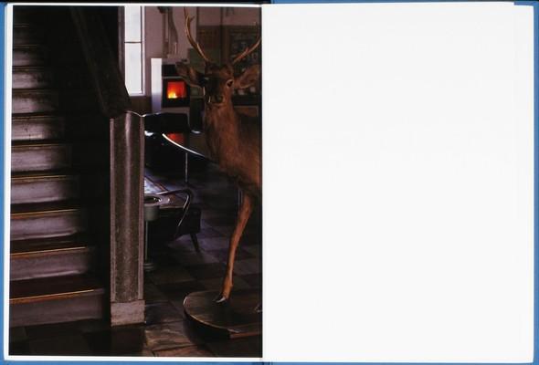 9 атмосферных фотоальбомов о зиме. Изображение № 14.