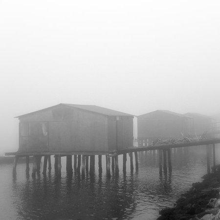 Туманные фотографии. Изображение № 1.