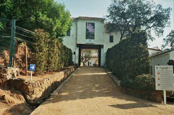 Вход в Ботанический сад. Изображение №60.