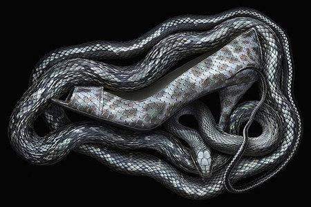 Гламурный многостаночник Peter Lippmann. Изображение № 6.
