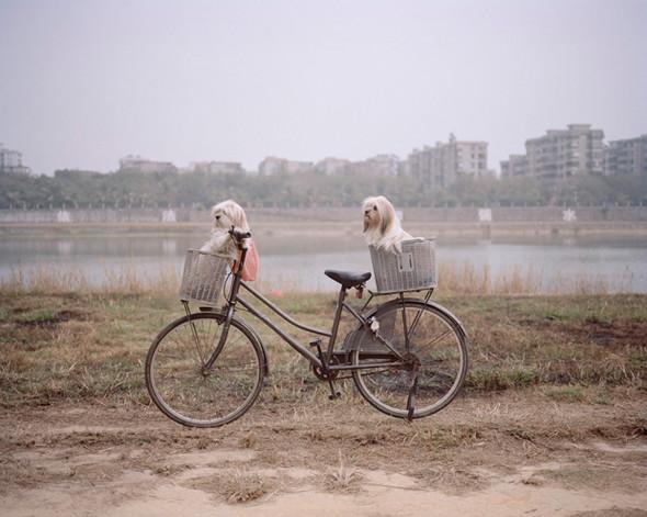 Фотоэкзотика: Фотографии из необычных путешествий. Изображение № 132.