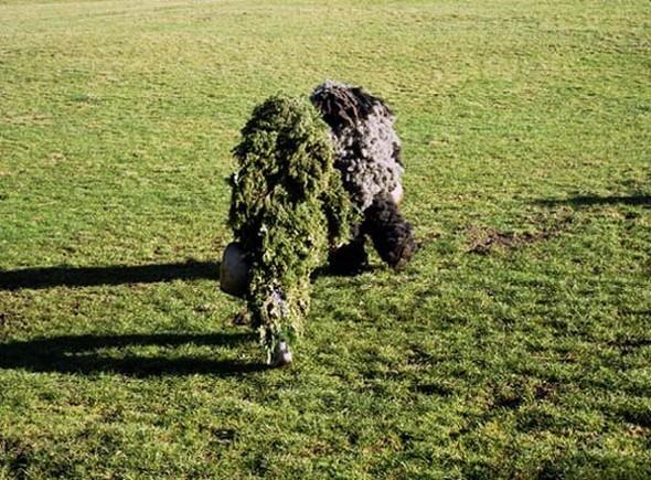 Выставка: Vice Photo Show 2011. Изображение № 48.