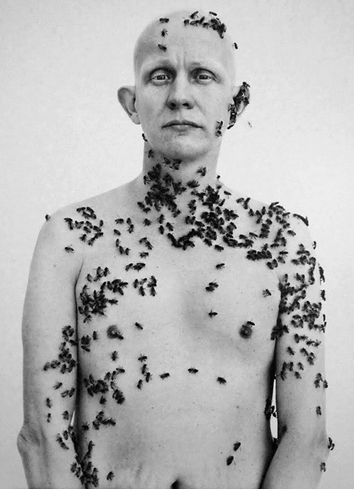 Мудборд: Таня Пёникер, художница. Изображение № 120.