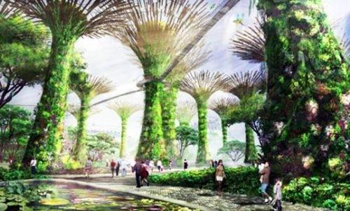 Гигантский проект сада изсолнечных деревьев. Изображение № 5.