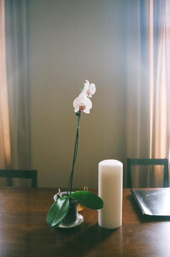 Квартира N2: Луиза иСаша. Изображение № 23.