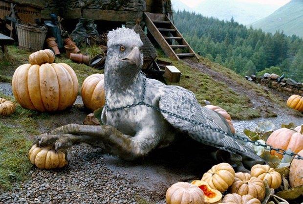 Гиппогриф Клювокрыл из фильма «Гарри Поттер и узник Азкабана». Изображение № 1.