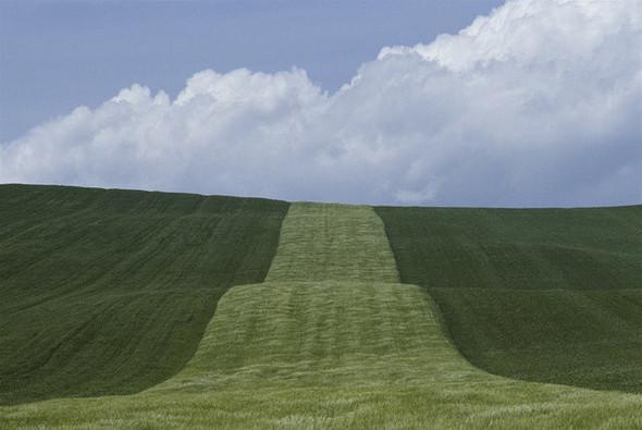 Франко Фонтана - первооткрыватель фотографической линии. Изображение № 5.
