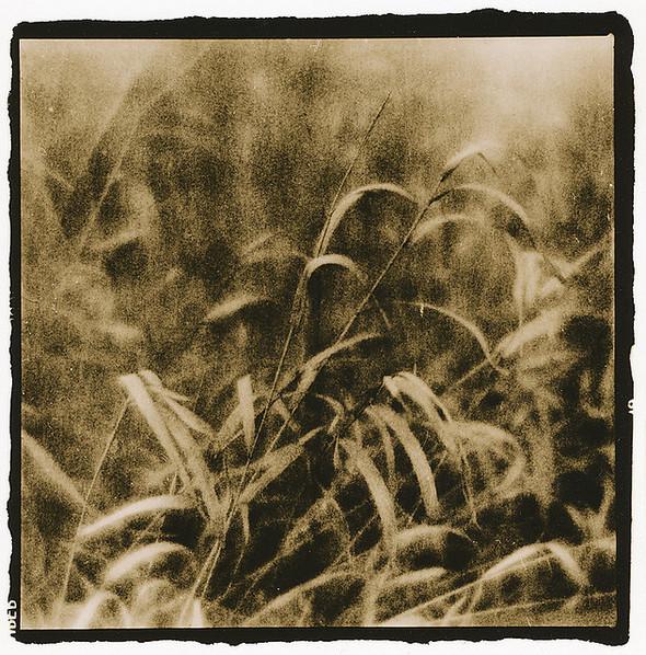 Изображение 5. Polaroidman Алексей Курбатов.. Изображение № 5.