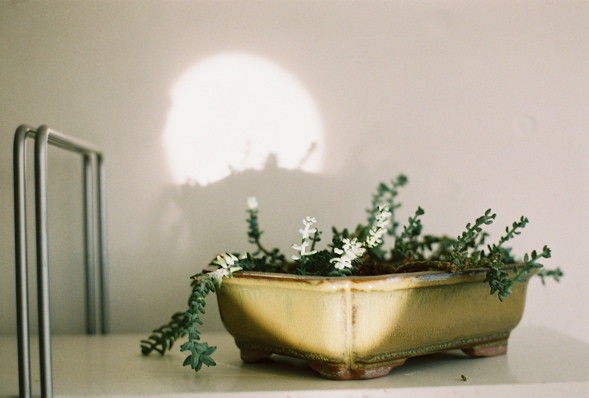 Photographs by Davin Youngs. Изображение № 15.