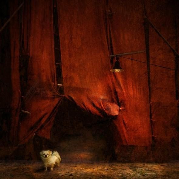 Загадочно-прекрасный мир болгарской фотохудожницы Магдалены Ванли. Изображение № 16.
