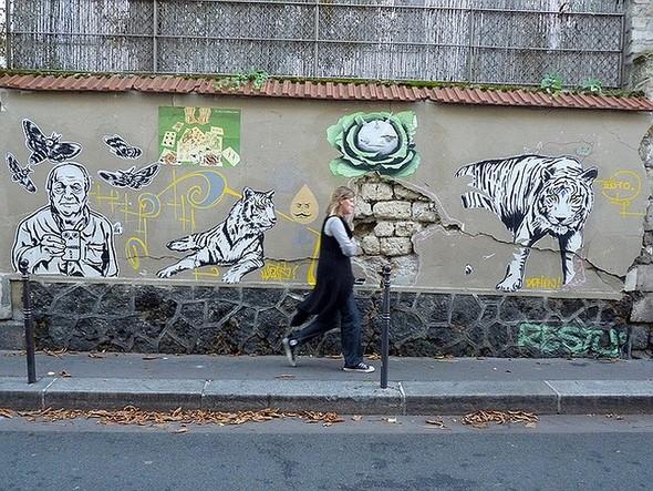 Стрит-арт в Париже. Изображение № 37.