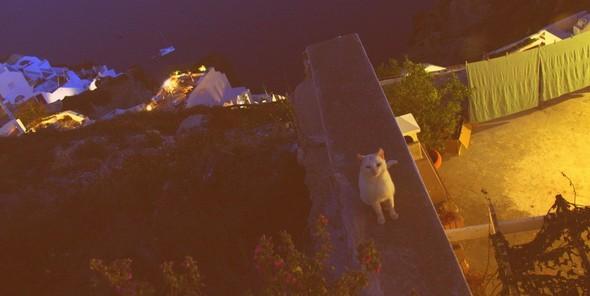Санторини: Боги, вино и закаты. Изображение № 20.