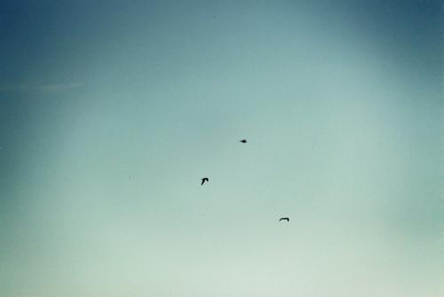 Изображение 35. Море и небо-два символа бесконечности.. Изображение № 34.