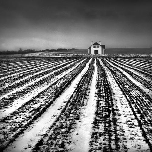Изображение 34. Dariusz Klimczak. Больше, чем просто фотография.. Изображение № 51.