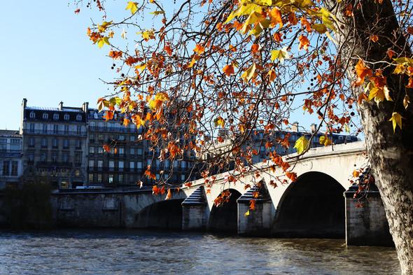 В поисках Парижа. Изображение № 21.
