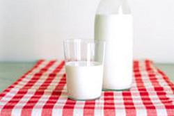 Молоко вредно?. Изображение № 1.