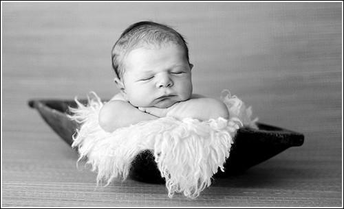Tracy Raver – фотограф новорожденных. Изображение № 18.