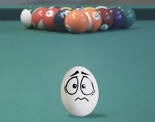 Удивительная жизнь яиц. Изображение № 19.