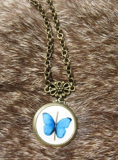 Бабочка и горностай. Изображение № 9.