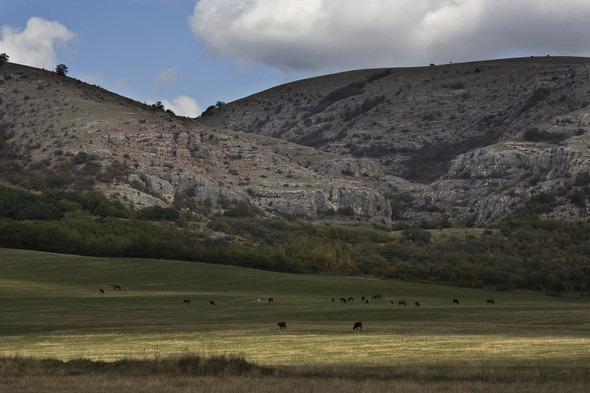 Пейзажи Крыма. Часть 2. Изображение № 14.