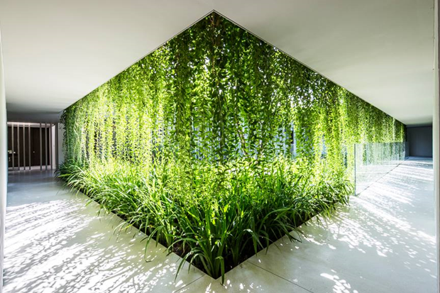 Архитектура дня: белый спа-центр во Вьетнаме с растениями на фасаде. Изображение № 6.