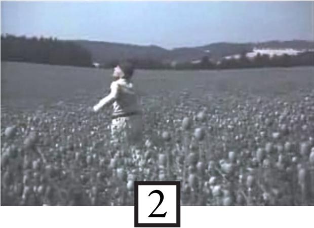 Вспомнить все: Фильмография Вернера Херцога в 20 кадрах. Изображение № 2.