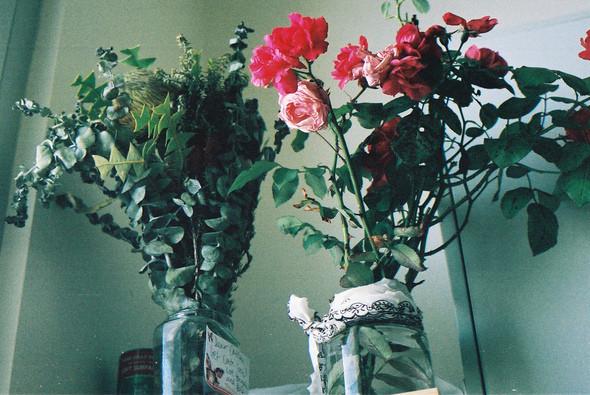 Изображение 17. Никогда не надо слушать, что говорят цветы. Надо просто смотреть на них и дышать их ароматом... Изображение № 17.