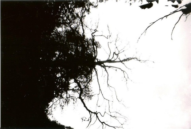 Чернобелый сентябрь. Изображение № 12.