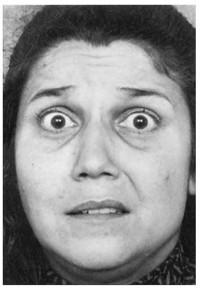 Узнай лжеца по выражению лица. Изображение № 9.