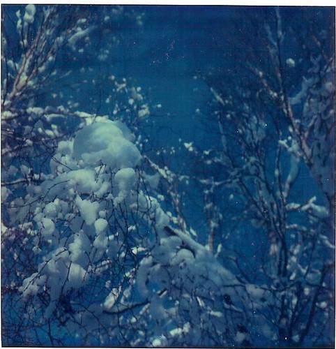 Ambient stills. Изображение № 3.