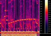 Харпер нашел слизняков в треках «Ночных слизняков» — на спектрограммах. Изображение № 11.