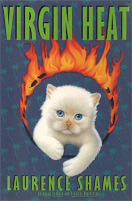 Тумблог дня: нелепые обложки книг из Kindle Store. Изображение № 5.