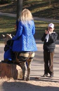 В мире животных: Герои «Мадагаскара» в мемах, рекламе и видеороликах. Изображение № 37.