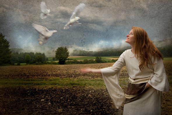 Томас Гаук. Пейзажи на перекрестке времен. Изображение № 16.