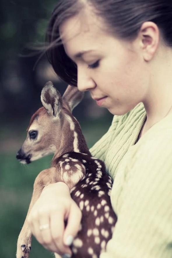 ЭМИЛИ ЛИ : девушка и олень. Изображение № 12.
