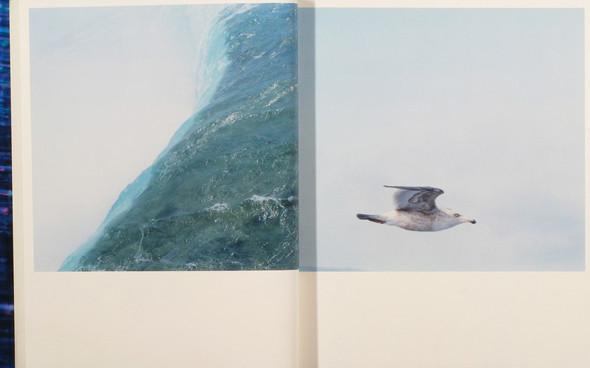 20 фотоальбомов со снимками «Полароид». Изображение №58.
