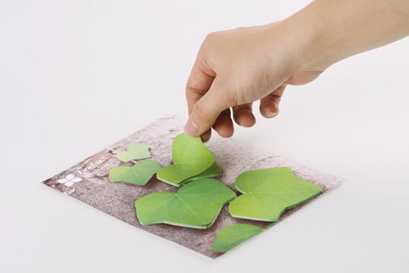Как добавить зелени в офисе?. Изображение № 1.