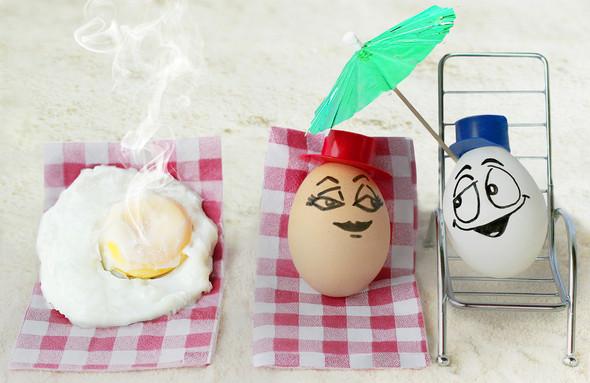 Удивительная жизнь яиц. Изображение № 7.