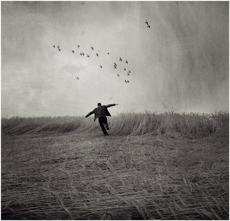 Польский фотограф BBerenika. Изображение № 1.
