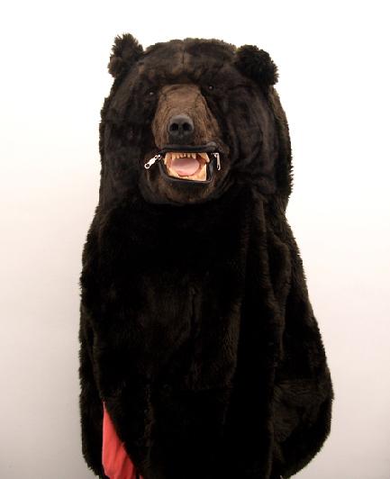 Медведь-спальник. Изображение № 5.