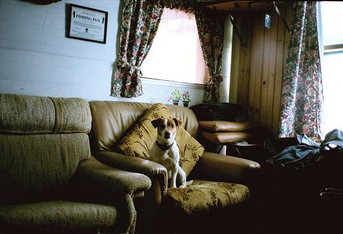 Flickr-галереи. Изображение № 43.