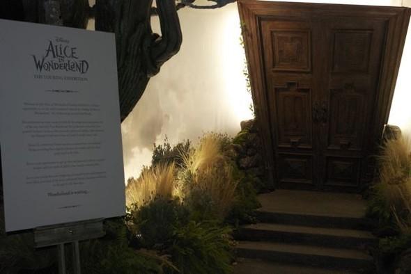 Alice InWonderland: реквизит, костюмы ипрочие нюансы. Изображение № 1.