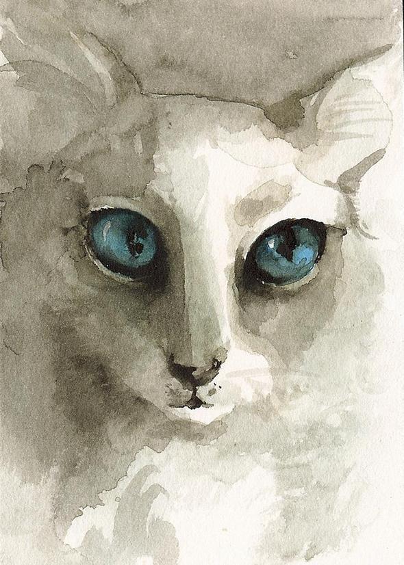 Изображение 6. Amber Alexander - животные, сияющие акварелью.. Изображение № 6.