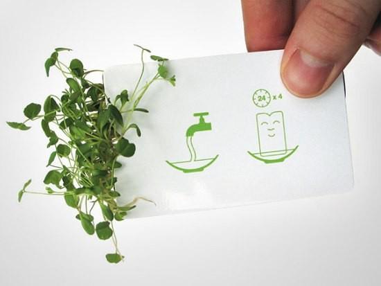 Зеленый дизайн. Изображение № 1.