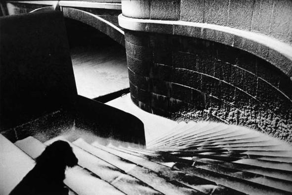 Три альбома петербургских классиков фотографии. Изображение № 7.