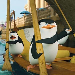 «Пингвины Мадагаскара» в кино, ярмарка non/fiction и концерт Swans — События недели на The Village