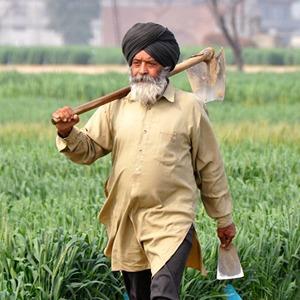 Жители ЮАР, США, Индии, Германии и Вьетнама — о выходе на пенсию  — Как у них на The Village