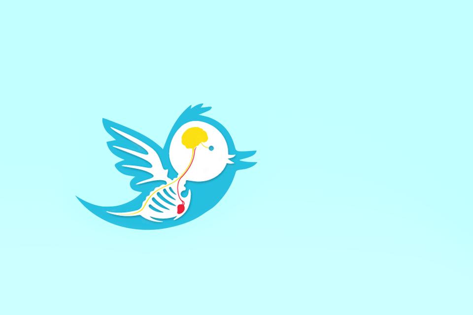 140 знаков свыше: Твиттеры предпринимателей-звёзд — Менеджмент на The Village