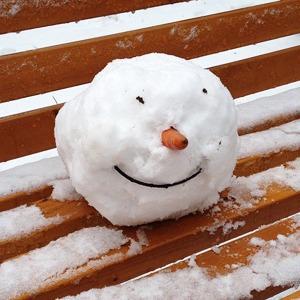 Первые снеговики в снимках Instagram — Weekend на The Village